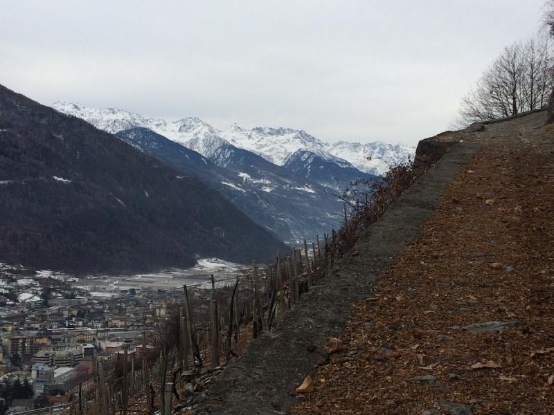 Hike in Tirano
