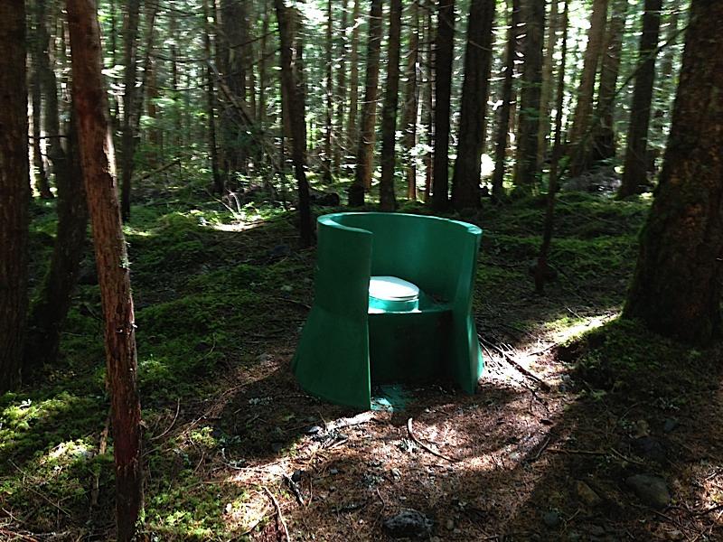 Skagit river valley trail