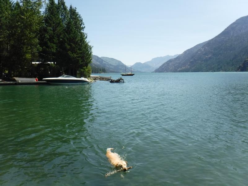 Cool Lake Chelan Swim