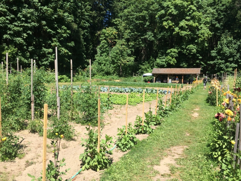 The Garden in Stehekin
