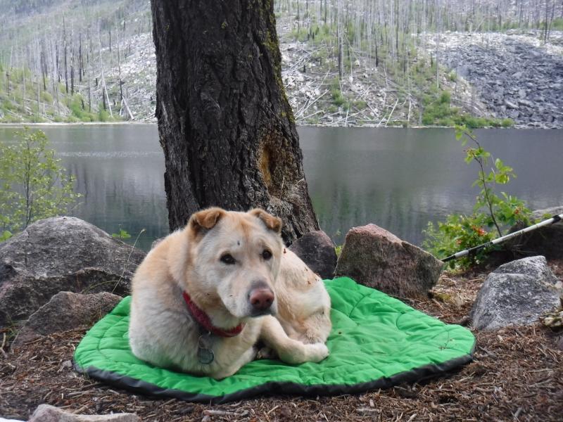 Our camp at Black Lake