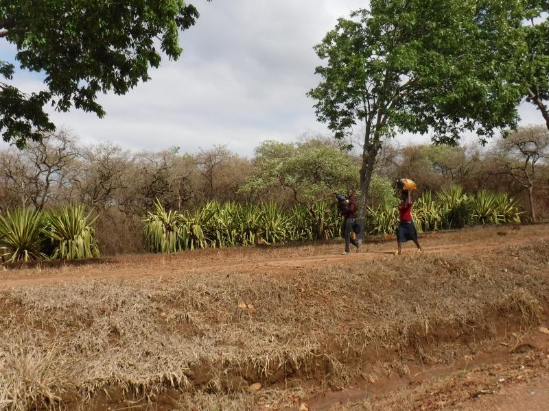 Lilongwe Street Scene