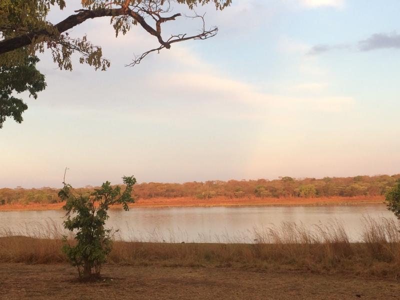Kasungu watering hole