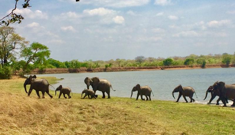 Visitors at Kasungu Lodge