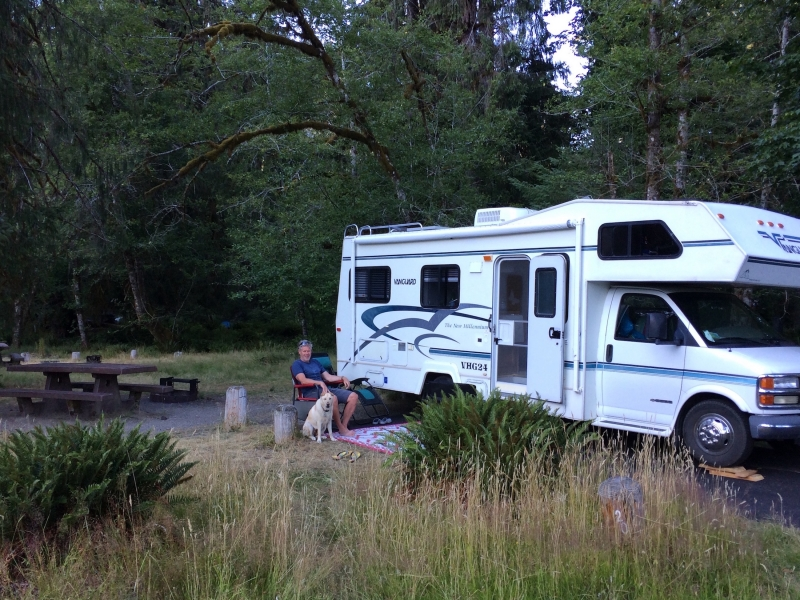 Hoh Campground Olympic National Park