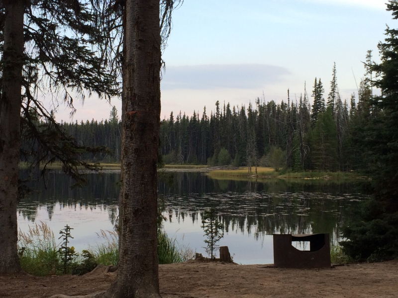 Camping at Idleback Lake