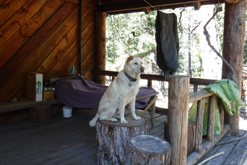 Keyla loves cabin life