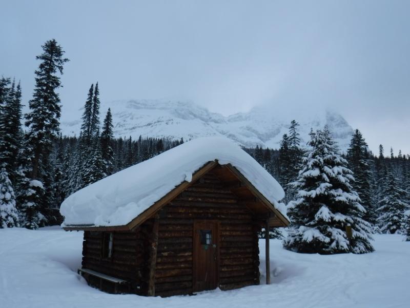 Lake O'Hara near Alpine Club hut