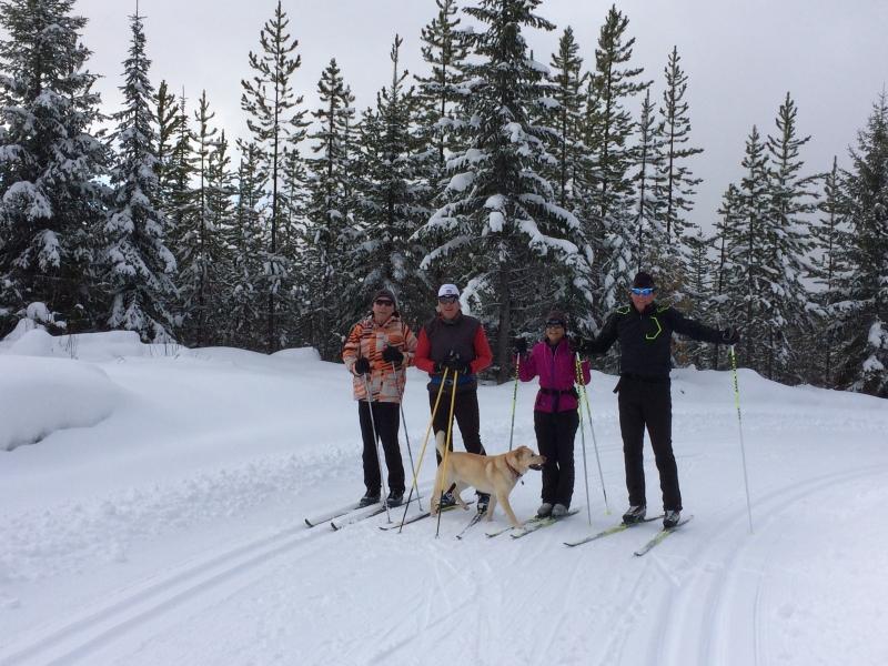 Nordic xc ski
