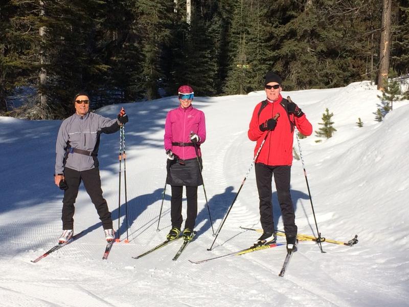 Nordic skate ski
