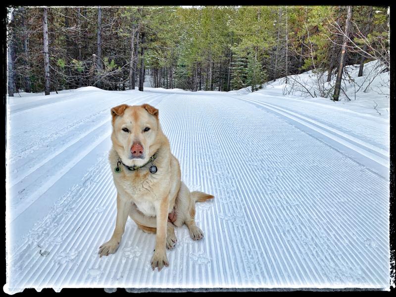 Keyla loves the snow