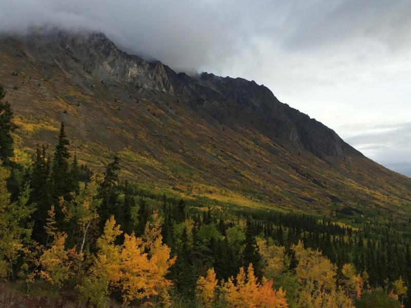 Yukon Sept 7