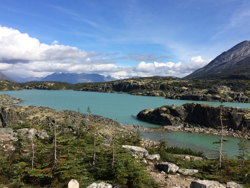 Between Carcross and Skagway Sept 7