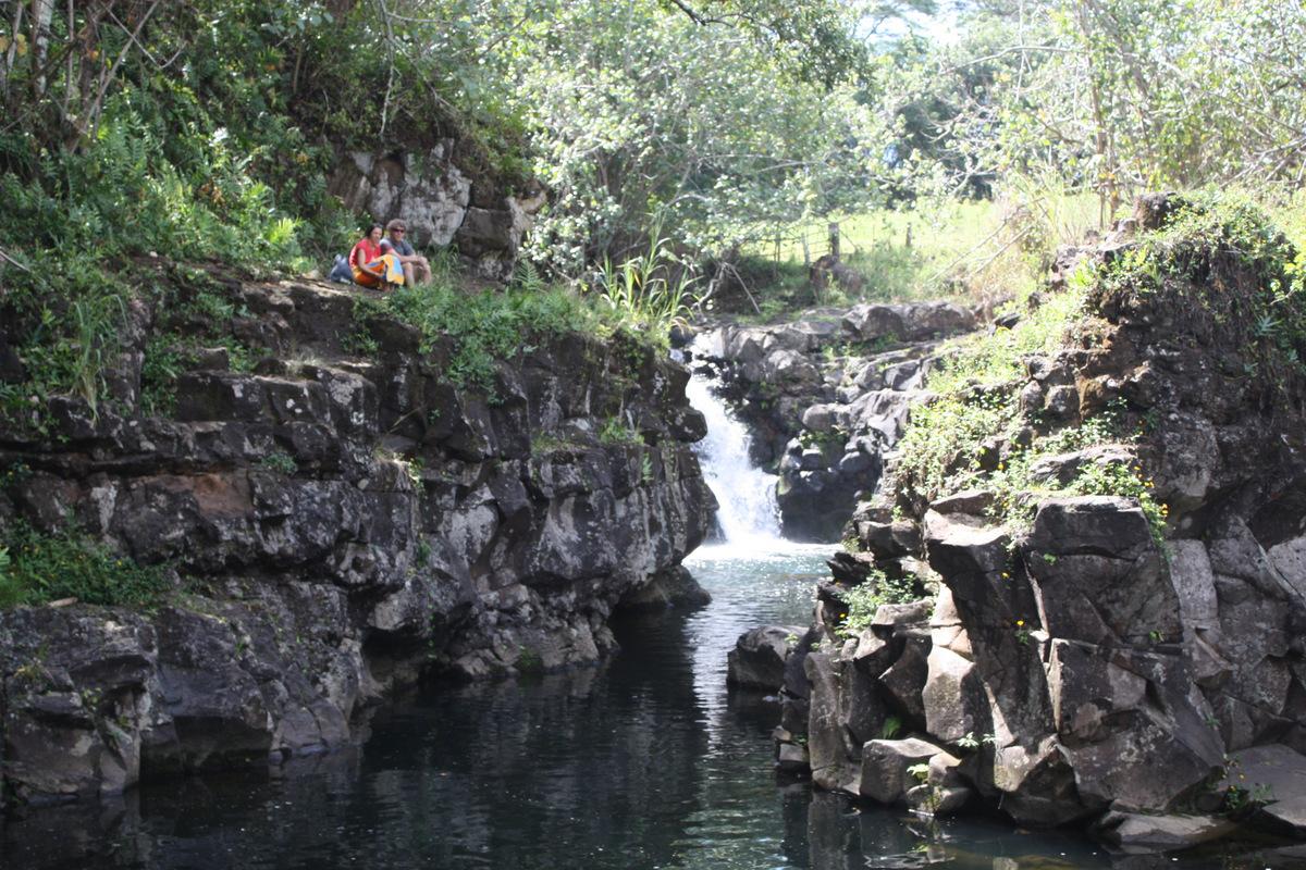 49-kauai