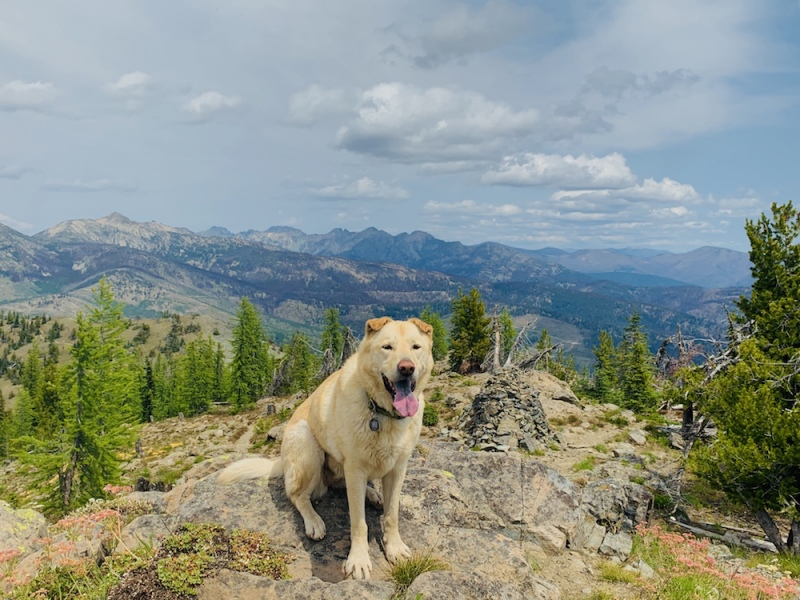 Methow Valley - Goat Peak