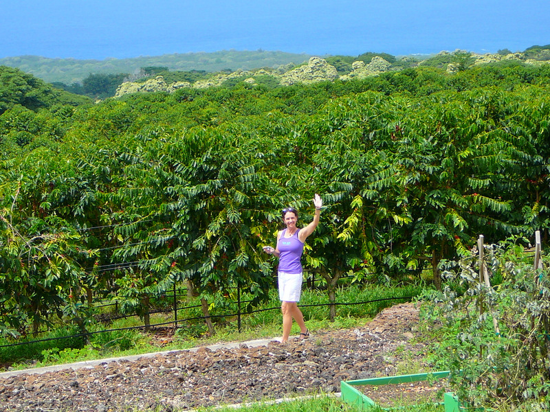 Dale at home on her coffee plantation!