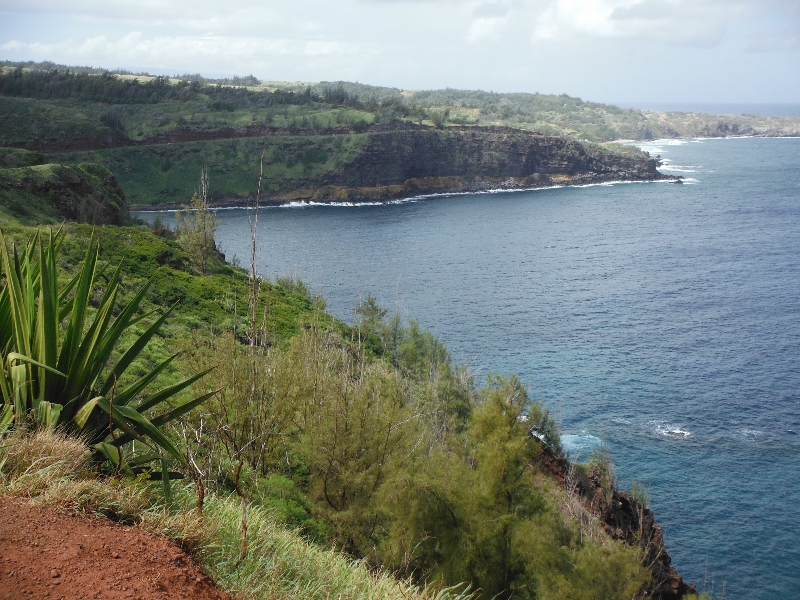 View from Honolua lookout