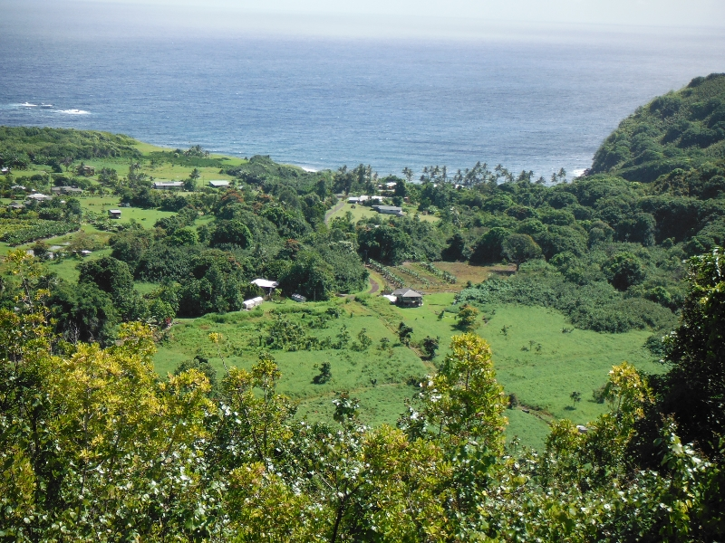 Lookout, Road to Hana