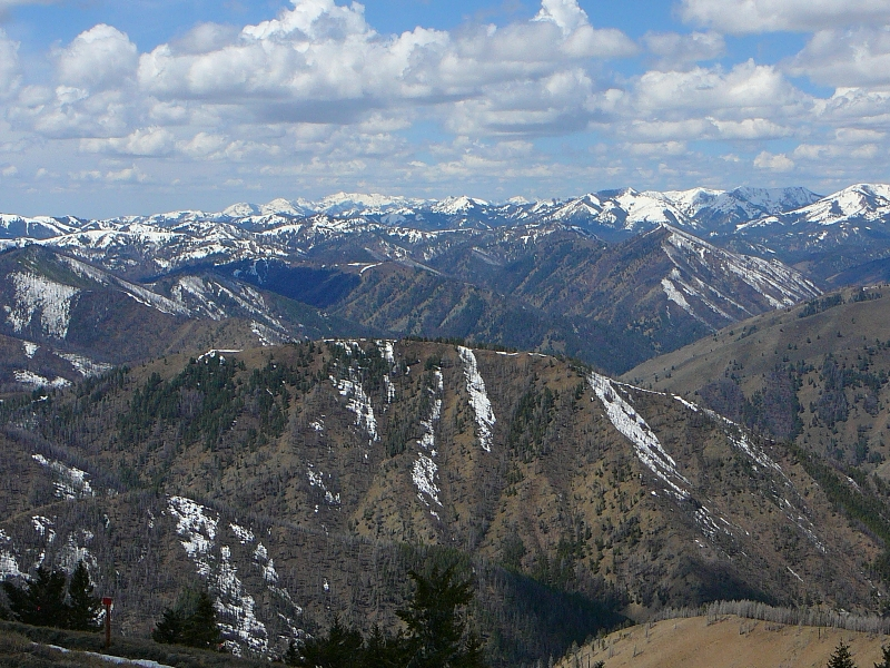 View from Bald Mountain ID