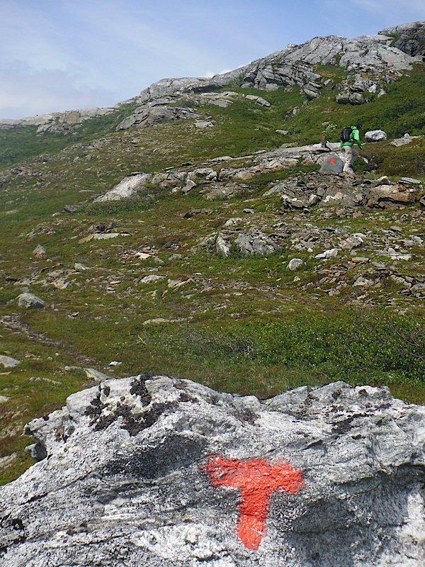 Saksaklepp Hike in Folgefonna NP
