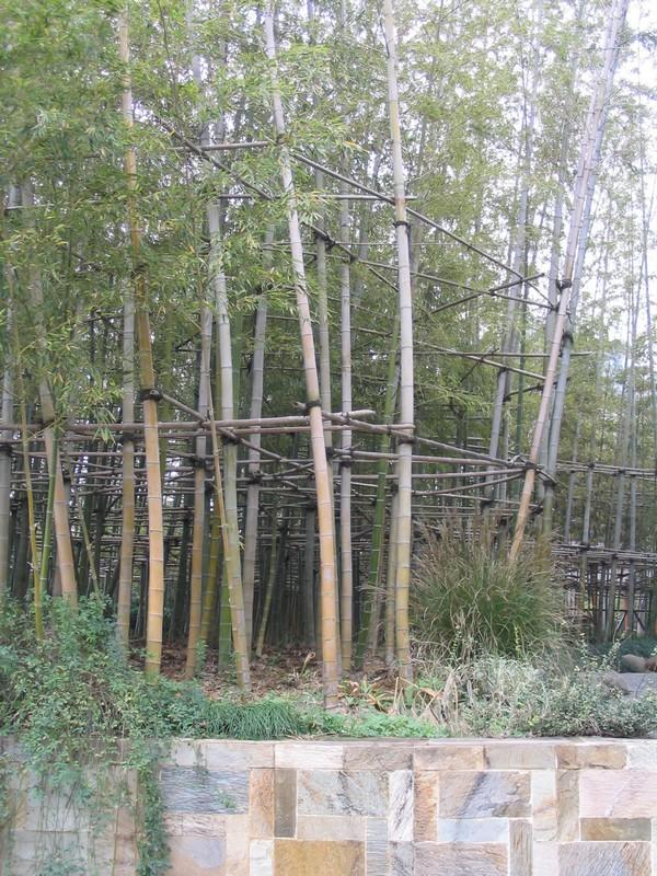 shanghai-33
