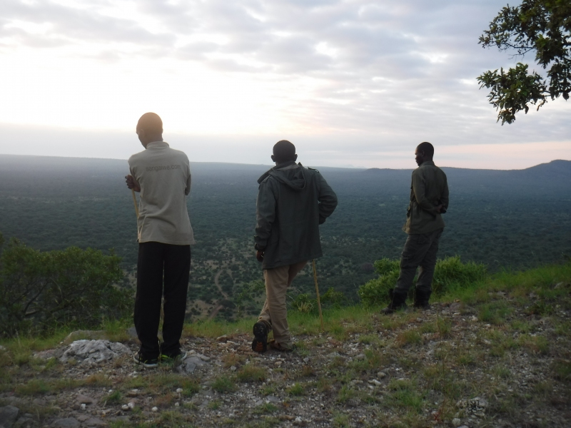 Early morning hike, looking over Tarangire