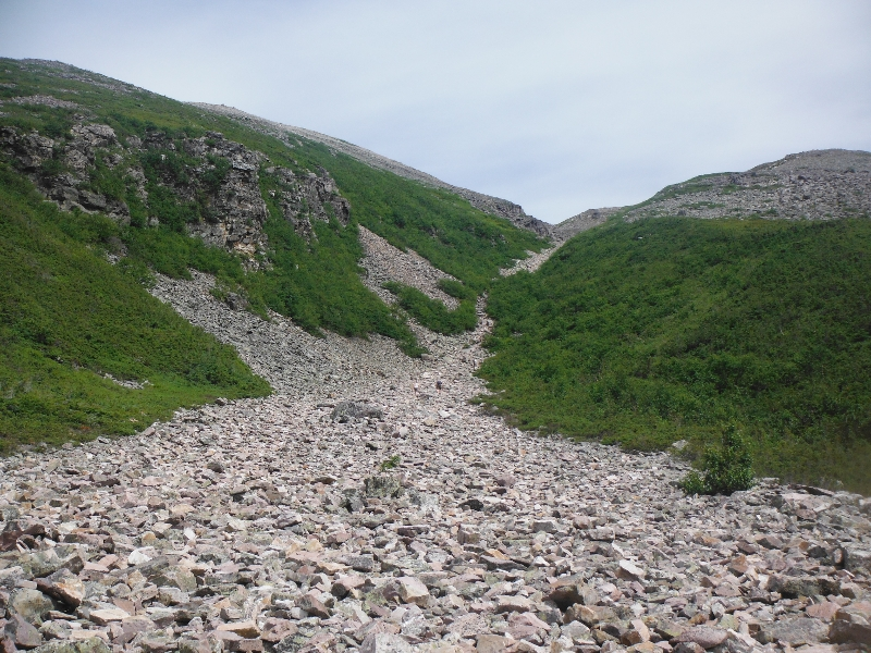 Gros Morne Mountain Hike: Yes, that IS the trail!