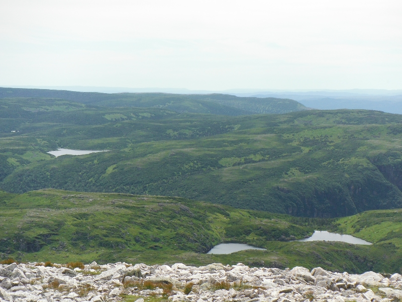 Views from Gros Morne Mountain - NL
