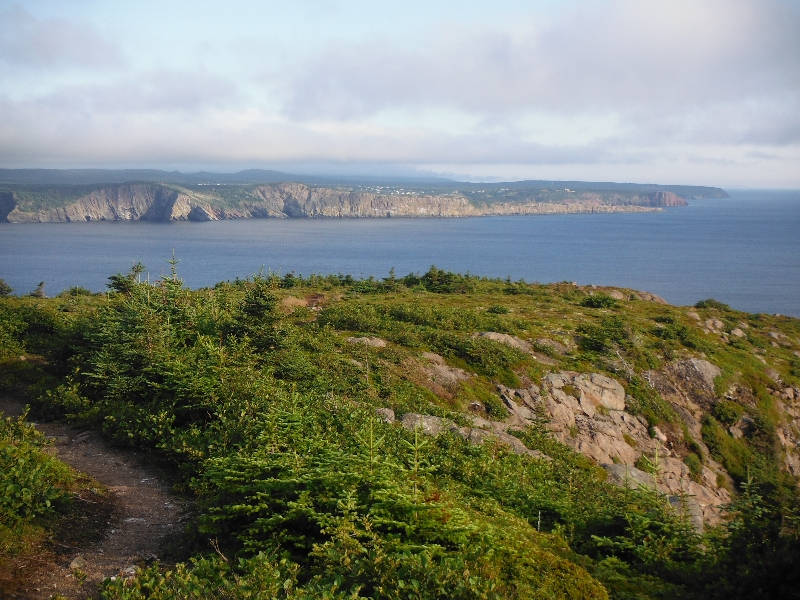 From the East Coast Trail near Torbay - NL