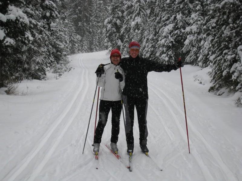 Nordic Ski 2