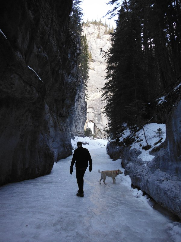 Grotto Canyon near Canmore
