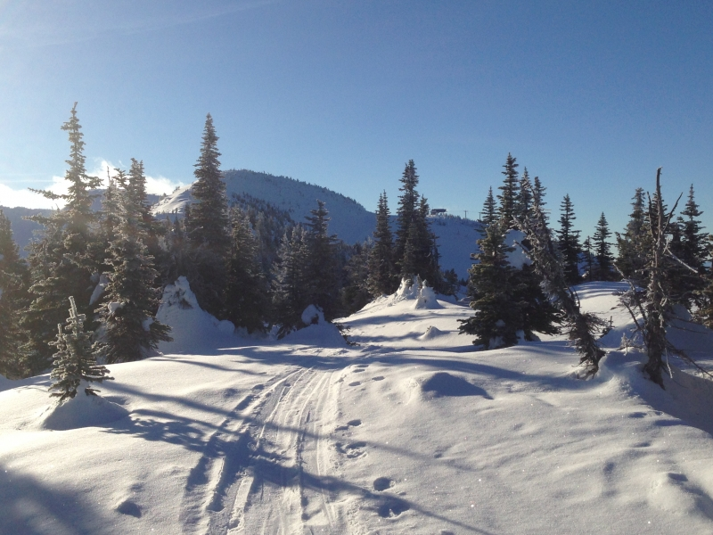 Backcountry at Big White